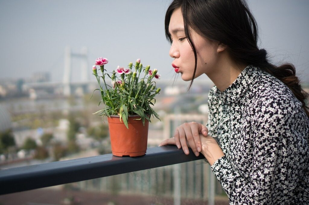 【お花の定期便】おしゃれで彩りのある生活を!オススメの花の宅配サービスランキング