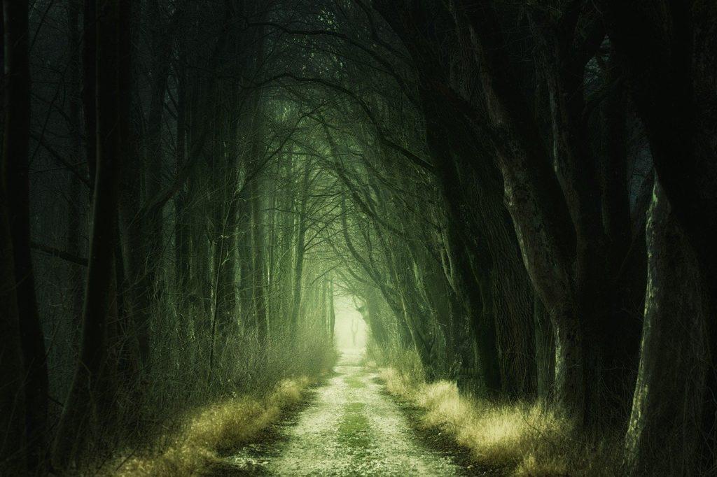 もう悪夢を引きずらない!悪夢の意味と、嫌な夢をすっきり忘れる方法