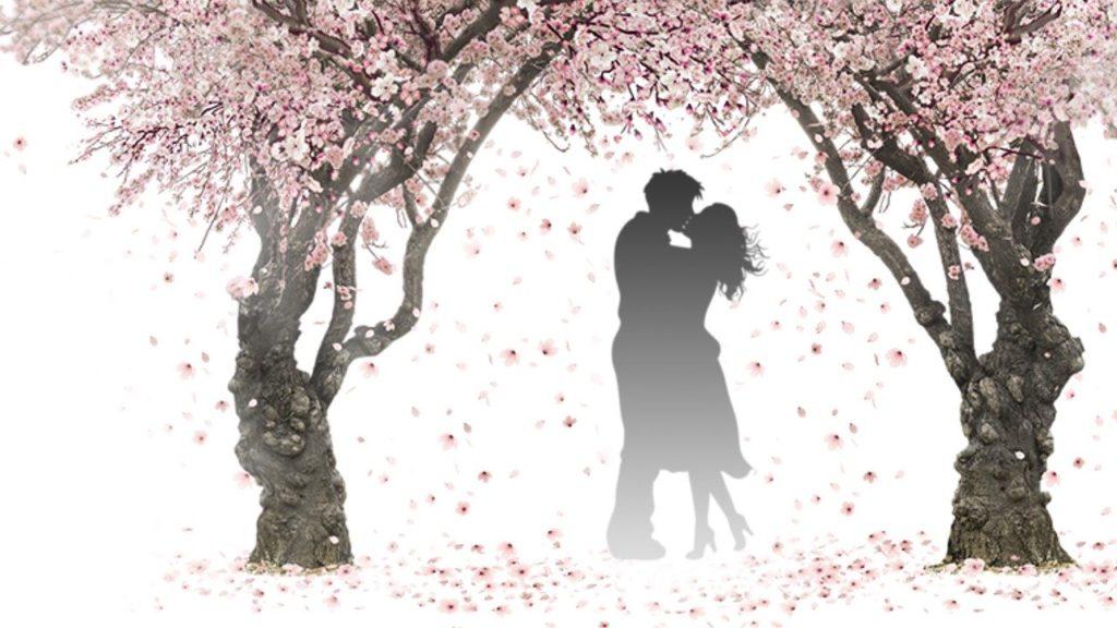 【大人ならではの恋を】アラフィフ女性が知っておきたい恋愛の楽しみ方