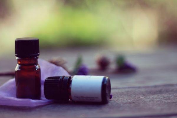 【気になるアロマオイルの効能】人気のジャスミンの効能と活用法