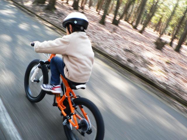 【夢占い】自転車の夢を見たときの暗示・意味とは?