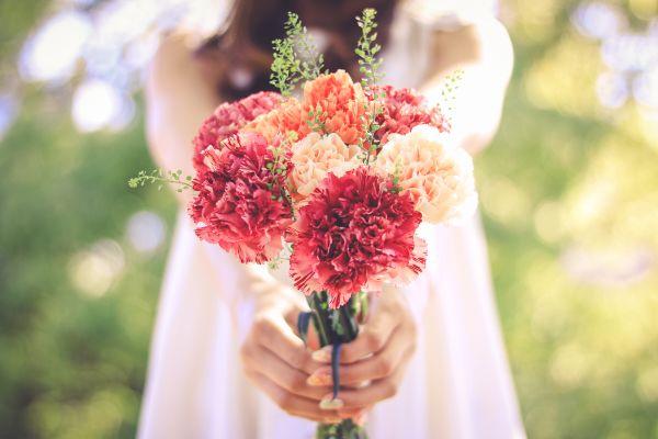 【夢占い】夢の中に花が出てきたときの暗示・意味とは?